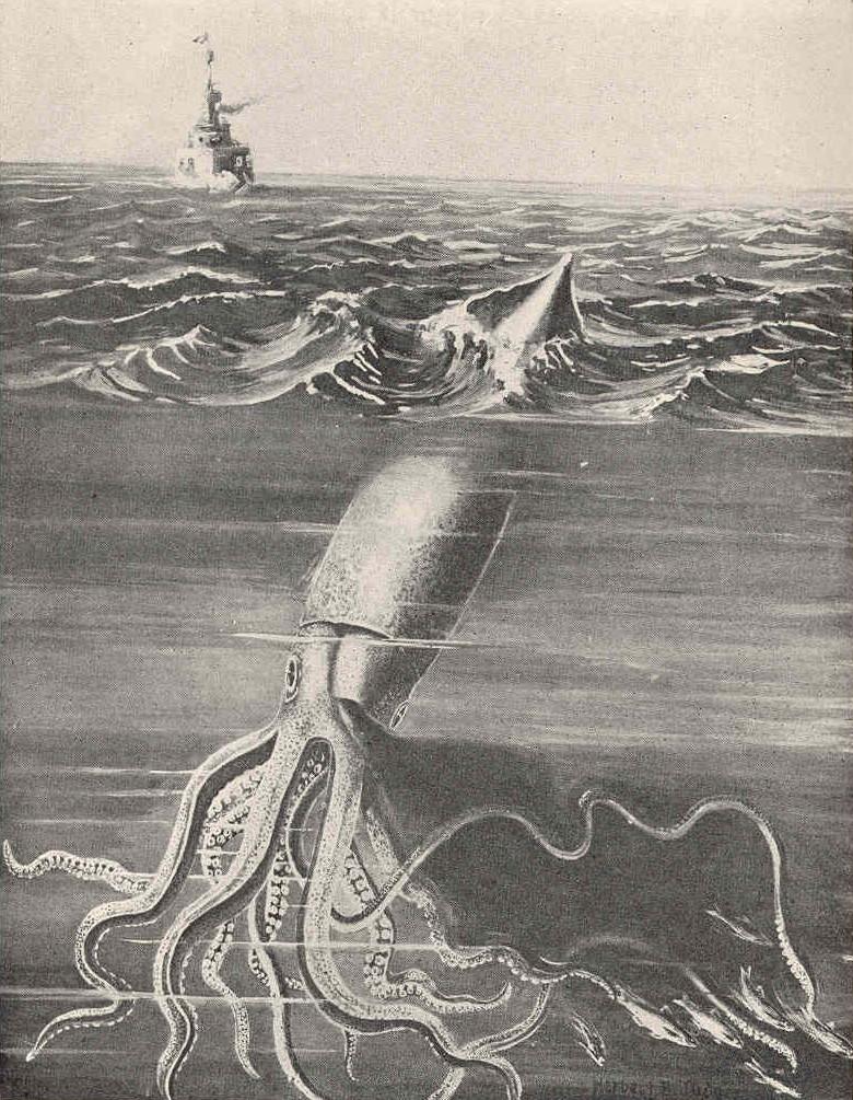 https://mk0itemsssrcorgqb419.kinstacdn.com/wp-content/uploads/2021/03/Giant-Squid.jpeg
